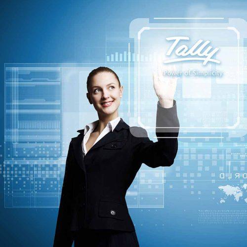 Tally-ERP-9 22